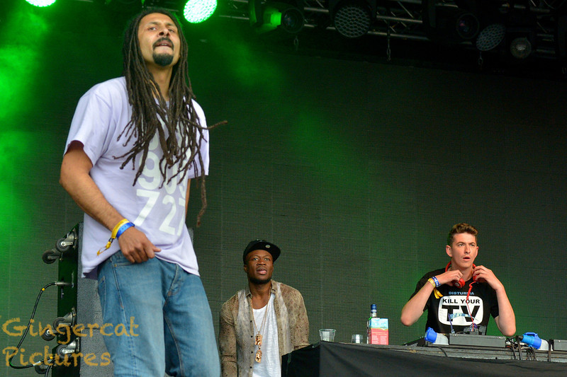 Skream and Benga, 2013 Rockness