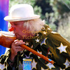 Summer of Love Festival, San Francisco  Jefferson Starship, 2007, Music, hippies, Wavy Gravey