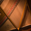 MBP-089| Reflection 1 | Looking into the Wing of the Piano