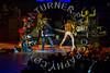 Turner-3310