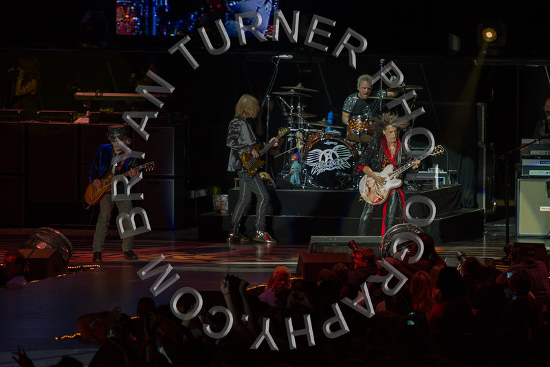 Turner-3450