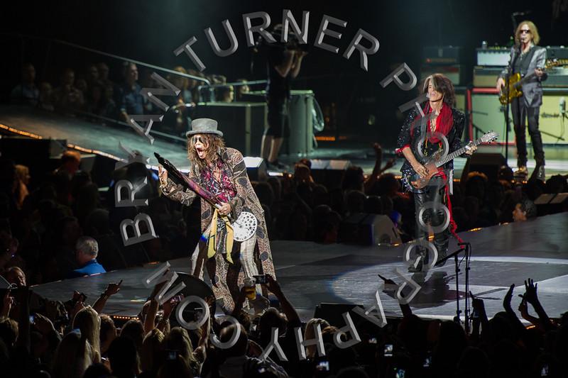 Turner-3114