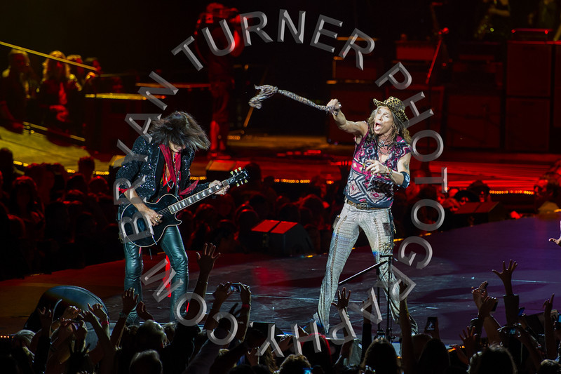 Turner-3394