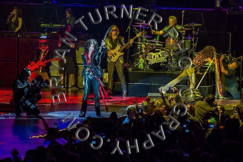 Turner-3321