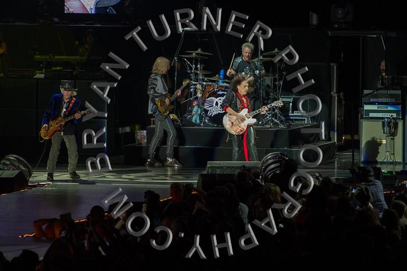 Turner-3446