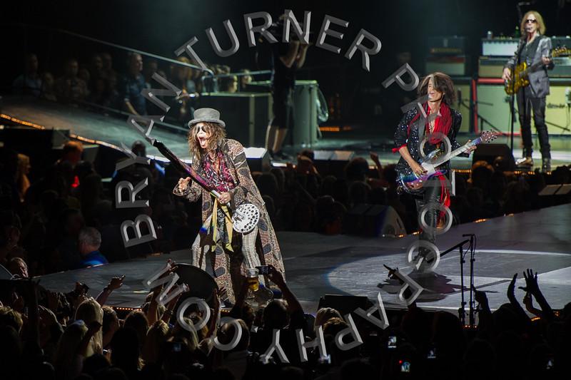 Turner-3115