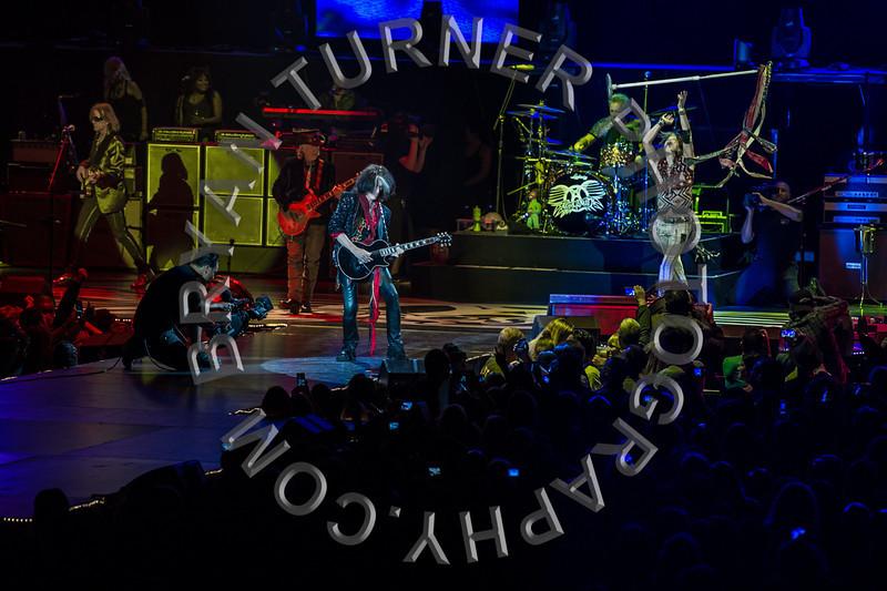 Turner-3338