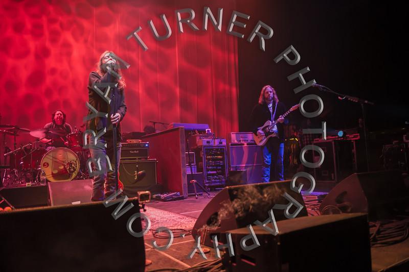 Turner-8274