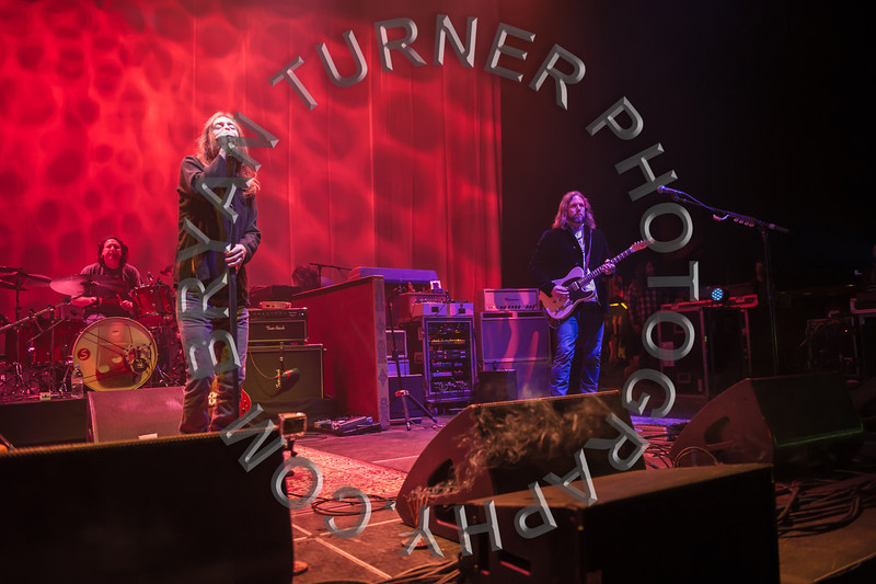 Turner-8275