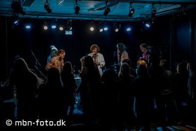 Public Æsel 27/11 2015