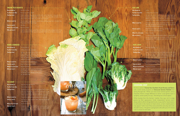 "the latest assignment for edible Vancouver, Spring 2015; ""Ode To Choy: An Amateur's Guide to Chinese Greens""; grab your copy today from these locations: <a href=""http://ediblecommunities.com/vancouver/Distributors/"">http://ediblecommunities.com/vancouver/Distributors/</a>"