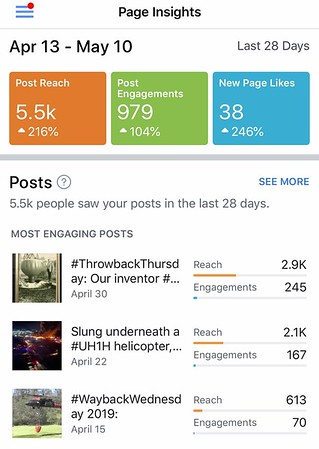 Bambi Bucket Facebook Page Insight