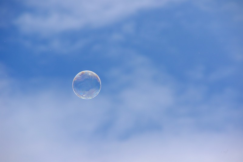 This was a fun one to follow and maintain focus on as it wafted into the sky from a child's wand.