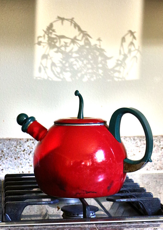 I was going (literally headed out the door when the moment caught my eye) for an ink on canvas backdrop to the vibrant kettle, simultaneously evoking a steam silhouette.