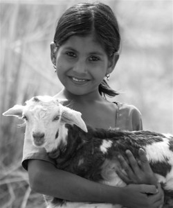 """Shepherdess of Rajasthan"", Rajasthan, India 2008  photograph by: Elizabeth Christopher © 2008"