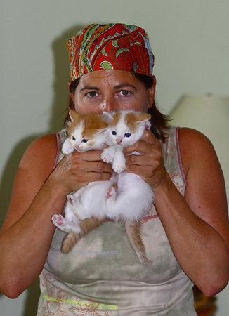 Ellie's Kittens