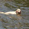 Che enjoying the Lake