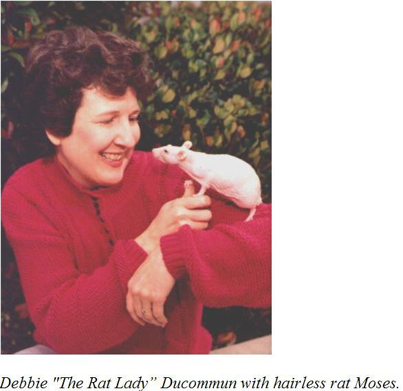 """If you're viewing the famous Rat Lady herself from the keywords page, click the link below to go to the gallery to view information from Debbie's new book on """"The Complete Guide to Rat Training: Tricks and Games for Rat Fun and Fitness,"""" plus other great information about her and her Rat Fan Club."""