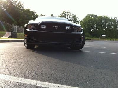 Mustang019