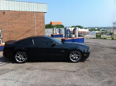Mustang006-1