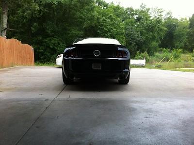 Mustang004-1