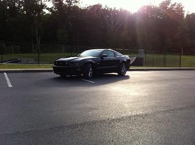 Mustang005