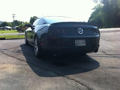 Mustang001