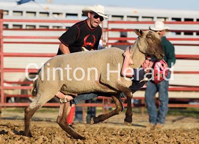 Mutton Bustin' at the Clinton County Fair 7-15-17