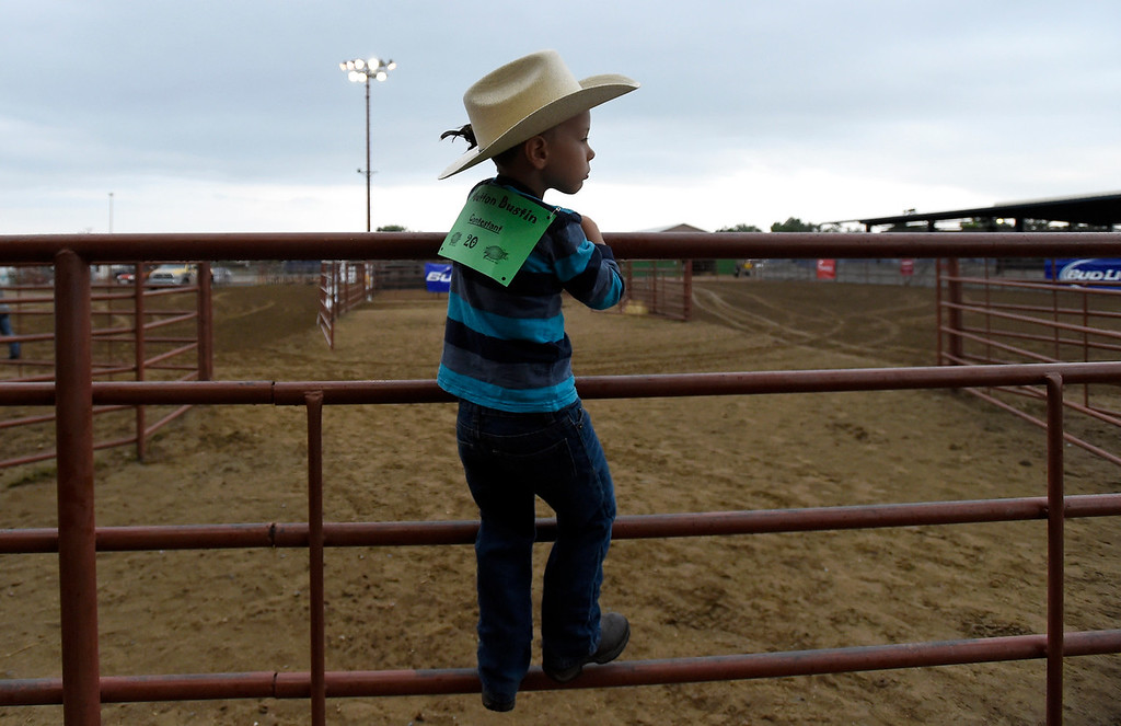 . Asher Toenjes, 5, waits his turn to ride a sheep during the Mutton Busting event on Thursday at the Boulder County Fairgrounds in Longmont. For more photos of the event go to dailycamera.com Jeremy Papasso/ Staff Photographer/ Aug 3, 2017