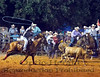 2016 Franklin County Sheriff's Posse Rodeo Photos