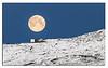 563. Moon & Fimbul