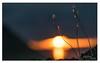 549. Autumn & Sunsets belongs.........