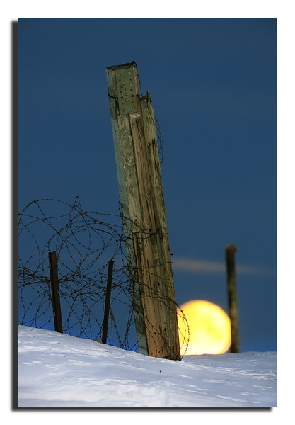 275. Barbed wire, a broken gate & the Moon rising over the Inland Ice. Friday 9th September 2011.
