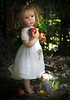 Child with Apples and puppy 9""