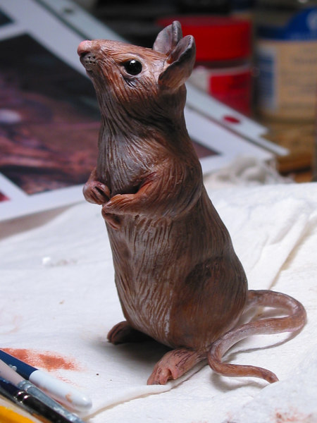 I sculpted this mouse this life size mouse of polymer clay. This is taken before his whiskers were added. I borrowed them from my cats.