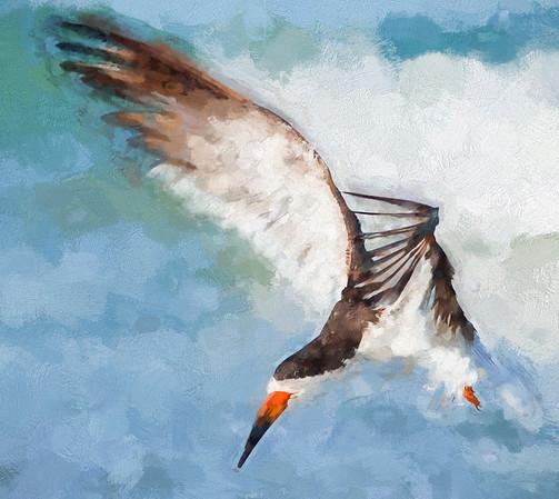 Skimmer Landing