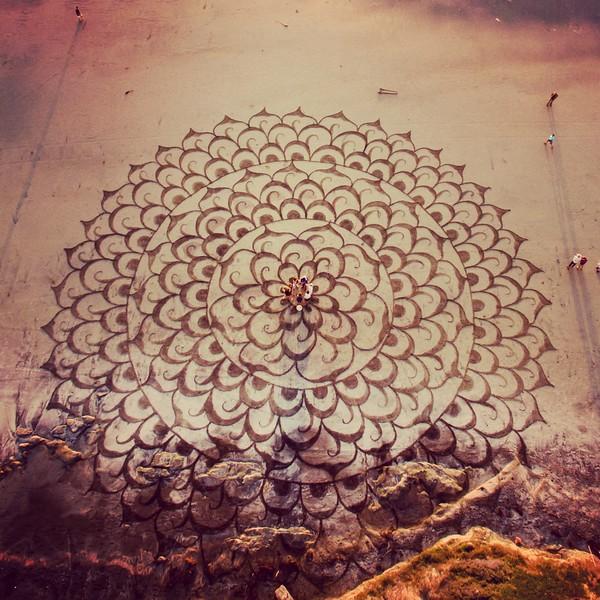 Mandala IV'