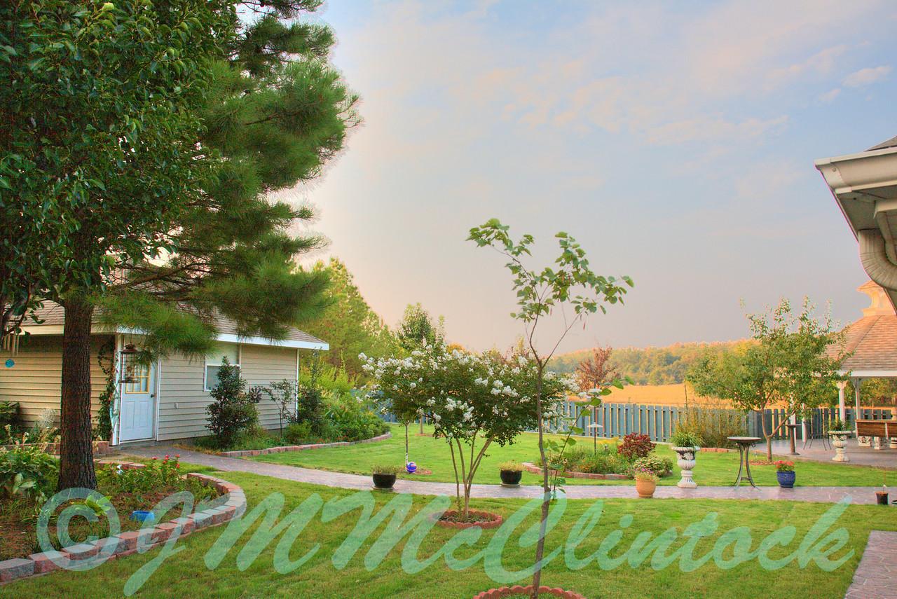 My Backyard in mid-summer.