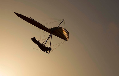 gliding in golden light