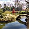 At Brooklyn Botanic Garden