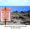 You've been warned!  --- Blow Hole, Maui Hawaii, Wai'napanapa, Hana Drive