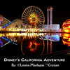 California Adventure, long exposure, night shot