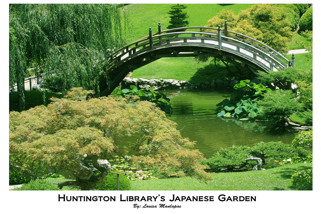 Huntington Library, Japanese Garden, Maple Tree, Bridge, San Marino