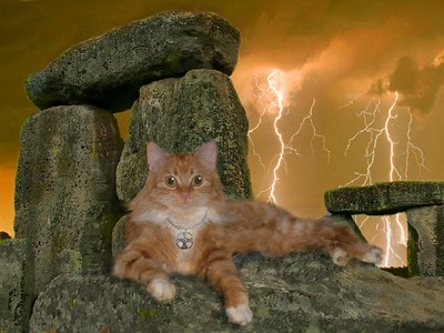 Stonehenge Baby Orange