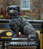 Greyfriars Bobby in Edinburgh - 7 August 2014