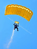 Golden Lion Parachute Team - Glasgow Festival Show