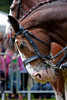 Glasgow Festival - Clydesdale