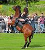 Rockin Horse Stunt Team - Glasgow Festival