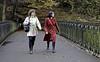Autumn Walk in the Park