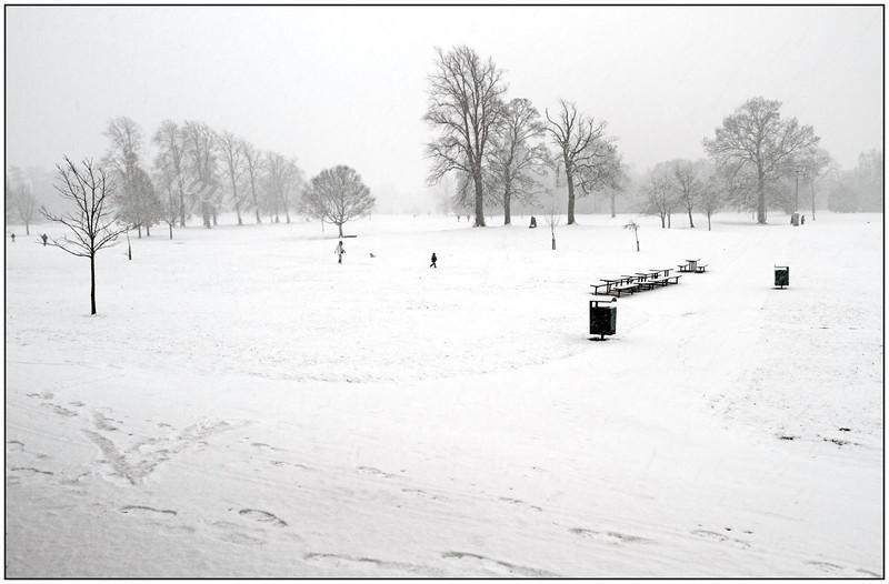 Rouken Glen Park - In the Snow